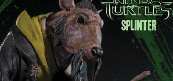 SIDESHOW'S NEW 1/4 SCALE SPLINTER! TMNT!